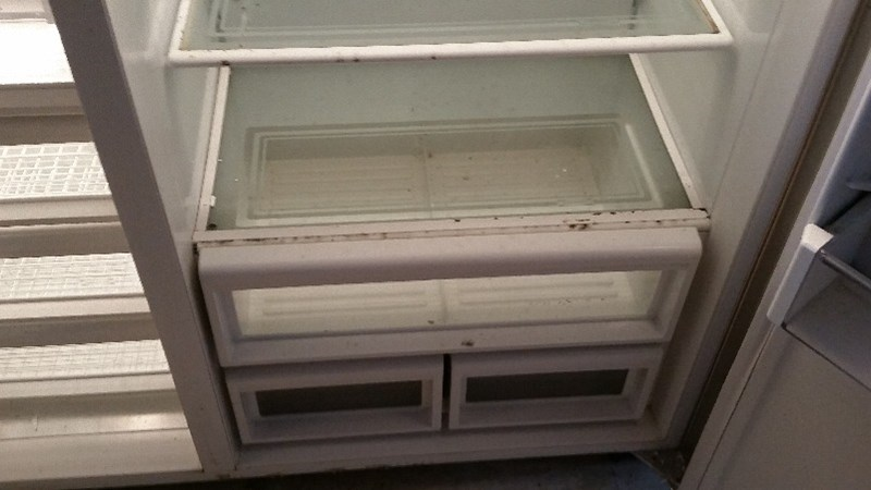 Water Damage - Mold in a Refrigerator